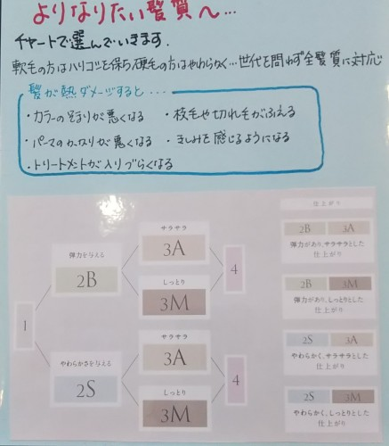 IMG_20190805_105211 (2)